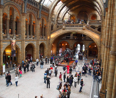 world's most-visited museums: Natural History Museum, London