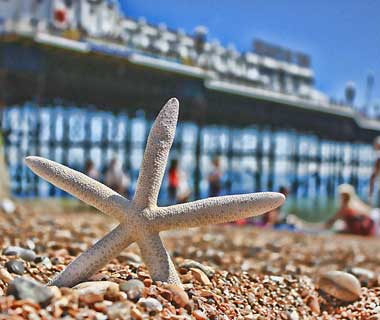 beautiful beaches: Brighton, England