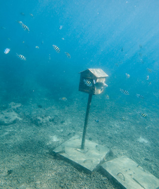 Underwater Attractions: Underwater Post Office, Vanuatu