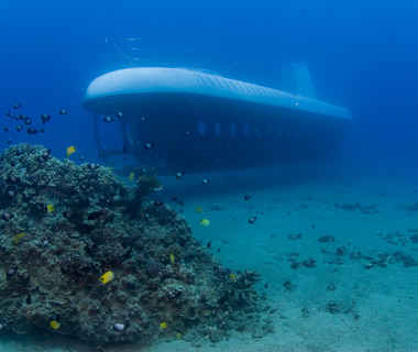 coolest underwater attractions: Atlantis Submarine Cruises