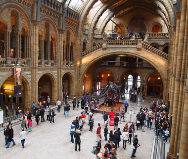 Europe's most-visited tourist attractions: Natural History Museum, London