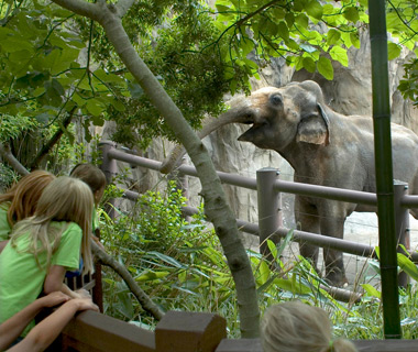 America's Most-Visited Zoos: Oregon, Portland