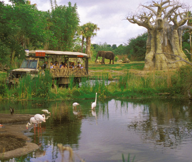 World's Most-Visited Theme Parks: Animal Kingdom, Walt Disney World