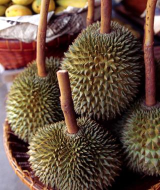 201208-w-strange-fruit-durian