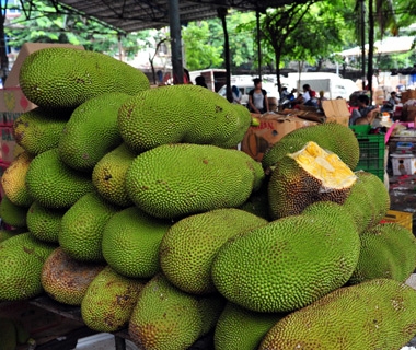 World's Weirdest Exotic Fruits: jackfruit