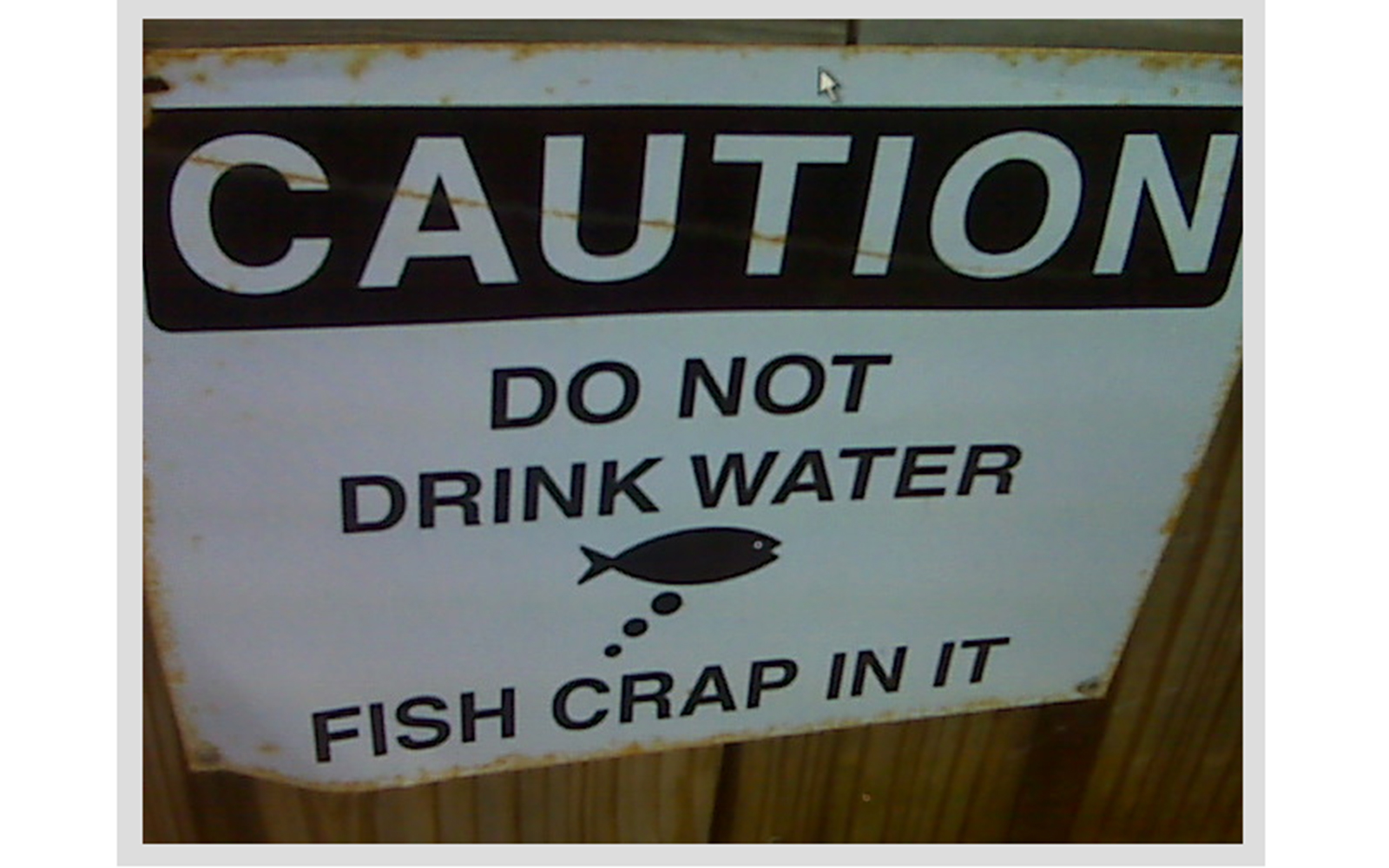 Funny Signs from Around the World: fish crap