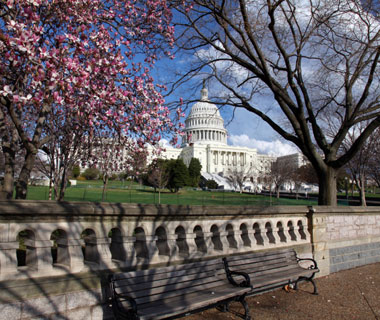America's Most Popular City Parks: National Mall
