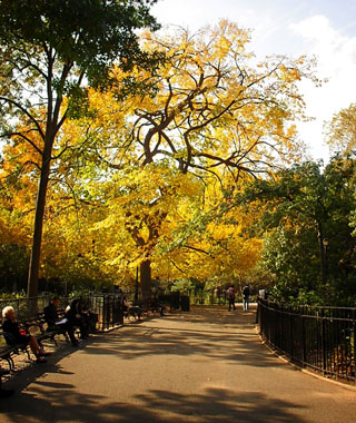 America's Most Popular City Parks: Tompkins Square Park