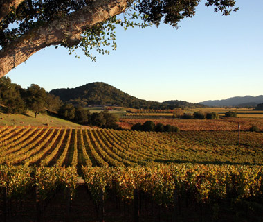 World's Best Wine Country Hotels: Calistoga Ranch