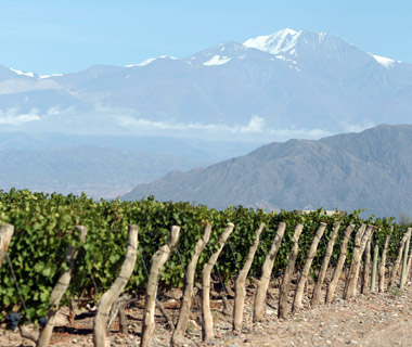 World's Best Wine Country Hotels: Park Hyatt, Mendoza