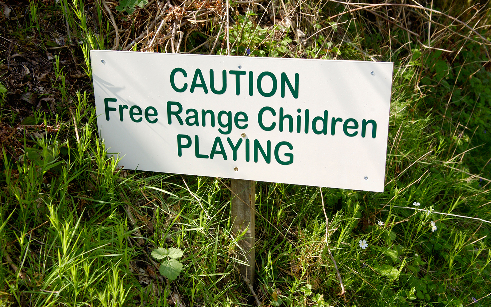 Funny Signs from Around the World: free-range children