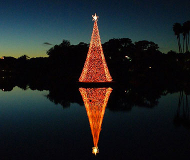 Beautiful Christmas Lights Around the World: Naples, FL