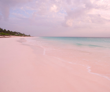 Best Beaches on Earth: Pink Sands Beach, Harbour Island, Bahamas