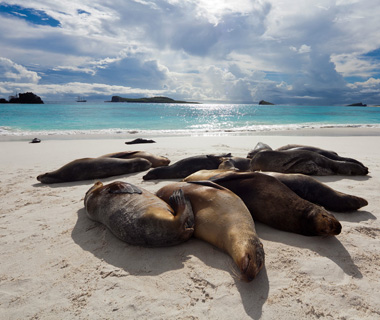 Best Beaches on Earth: Bahia Gardner, Espanola Island, Galapagos