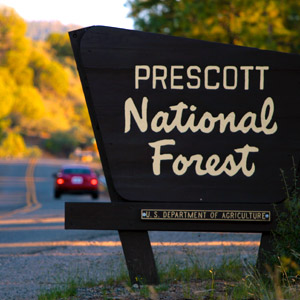 Hiking in Prescott National Forest