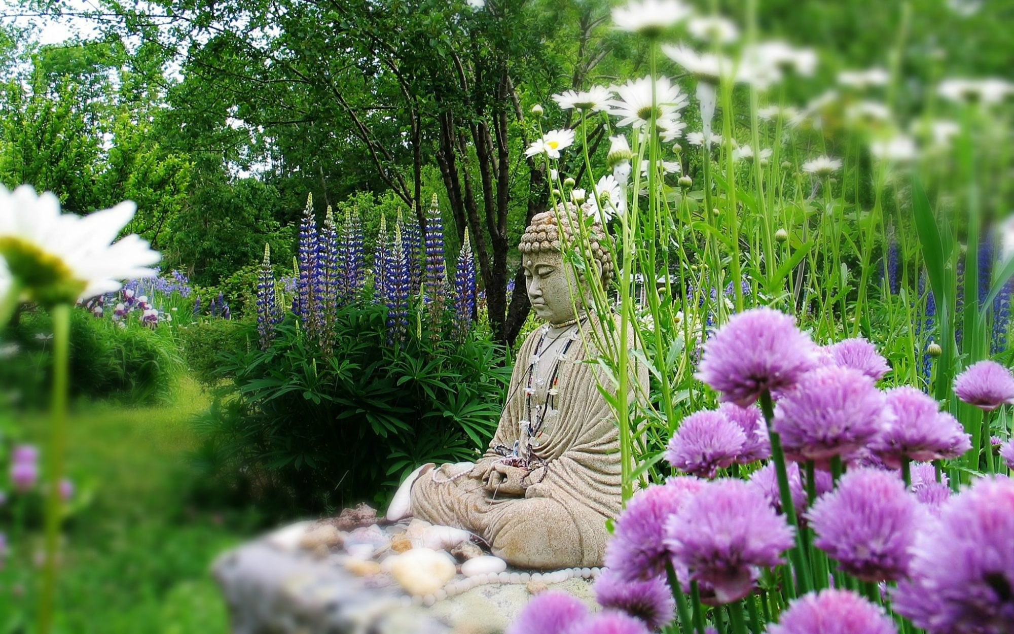 Buddah statue at Insight Meditation Society retreat in Barre, MA