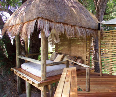 World's Best Hotels: Mombo Camp and Little Mombo Camp