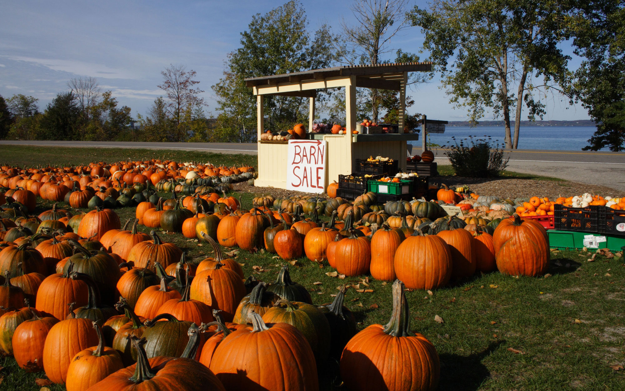 America's Best Towns for Halloween: Traverse City