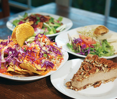 Best Vegetarian Restaurants in the U.S.: Vegeria