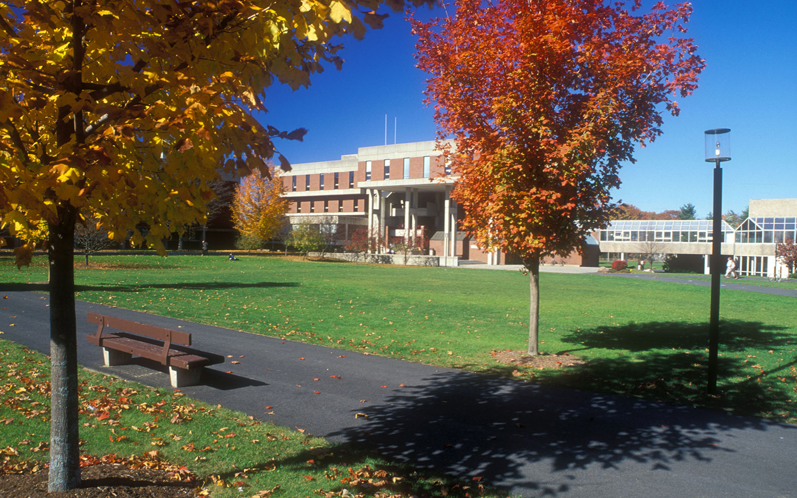America's Ugliest College Campuses: Hampshire College