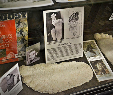 Strangest Museums: Bigfoot Discovery Museum