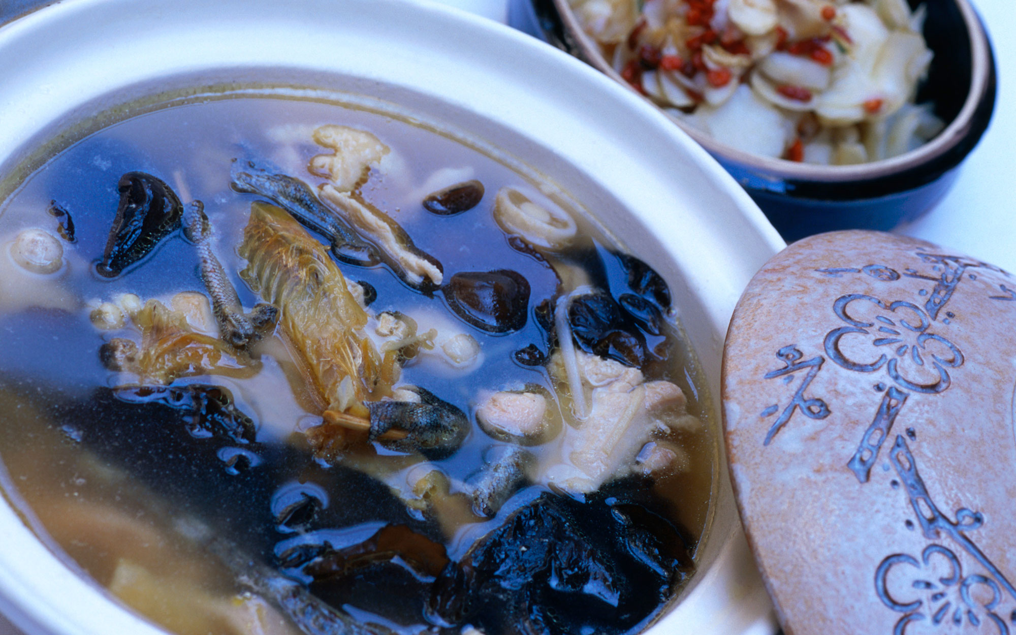 World's Strangest Cold Remedies: Lizard Soup