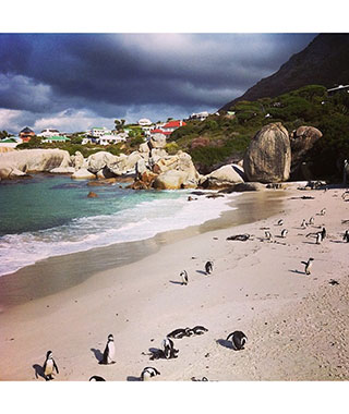 Beautiful Beach Photos: South Africa