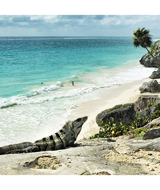 Beautiful Beach Photos: Tulum, Mexico