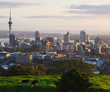 Cities that That Could Be the Next Pompeii: Auckland, New Zealand