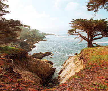 World's Best Cities for Romance: Carmel