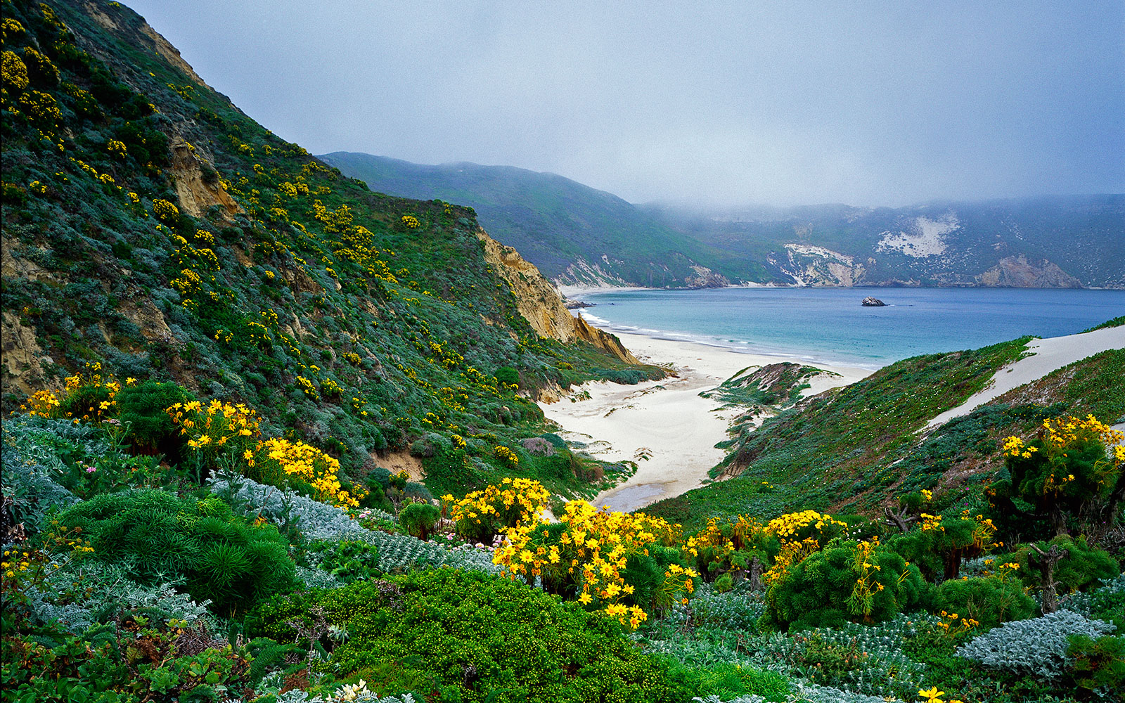America's Best Secret National Parks: Channel Islands, California
