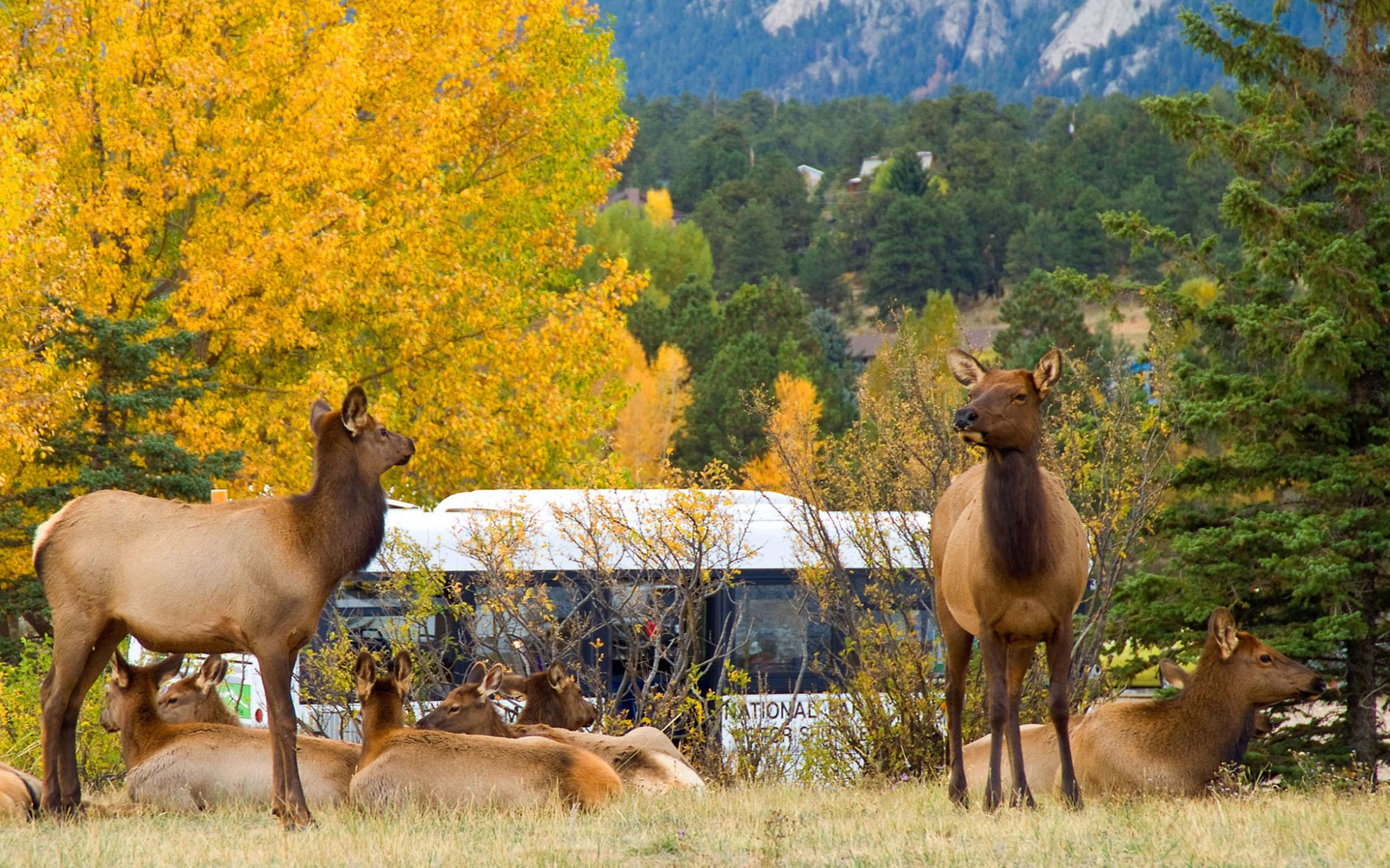 America's Best Towns for Fall Colors: Estes Park, CO