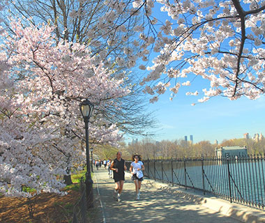 Best Urban Running Trails: Central Park Reservoir and Outer Loop, New York City