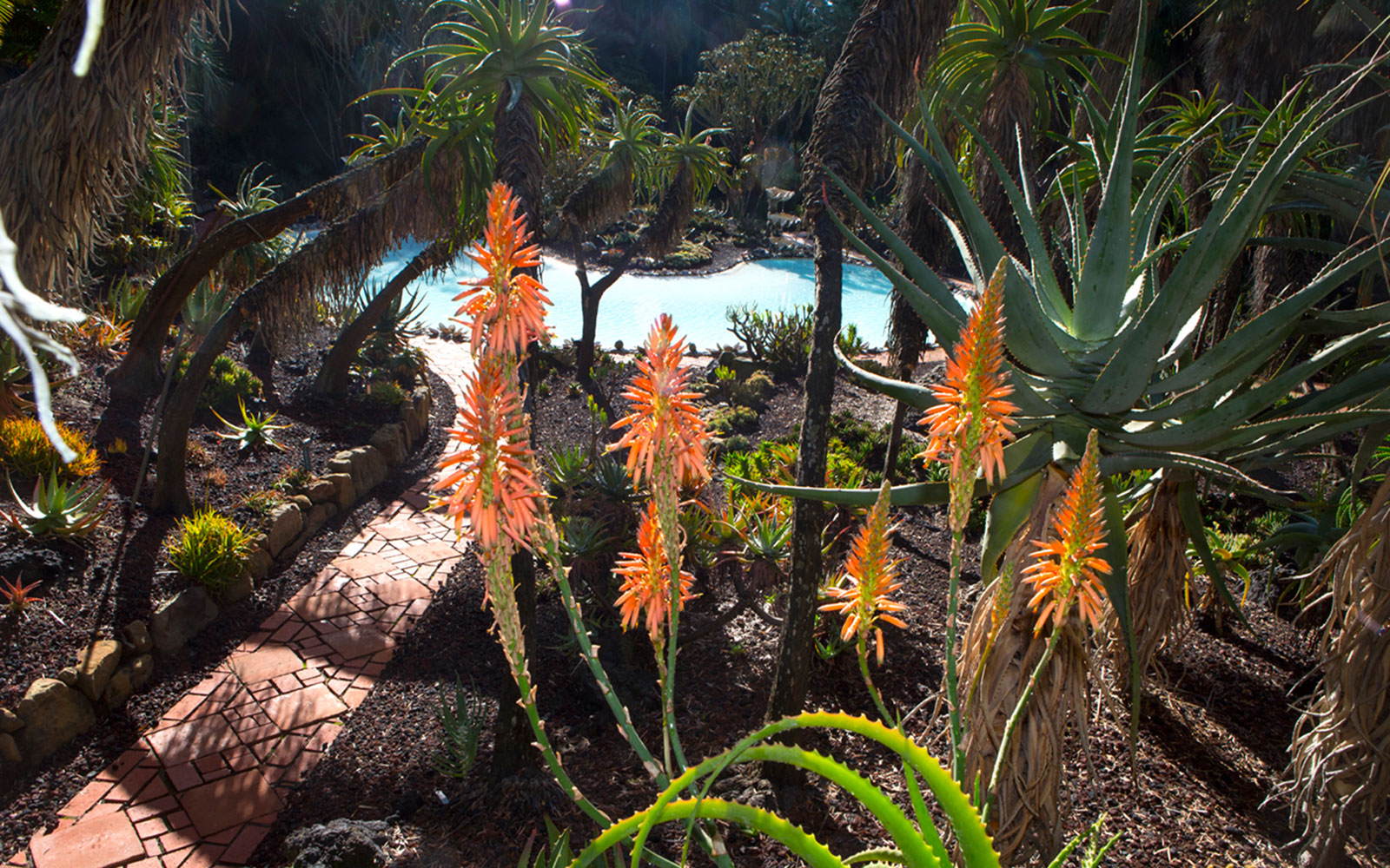 America's Most Beautiful Gardens: Lotusland
