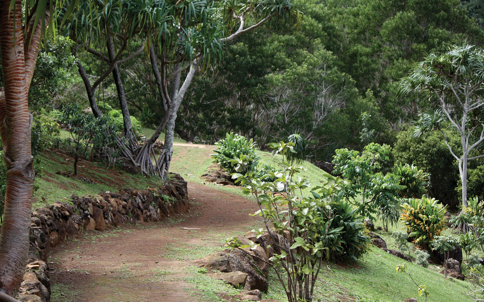 America's Most Beautiful Gardens: Limahuli Garden and Preserve