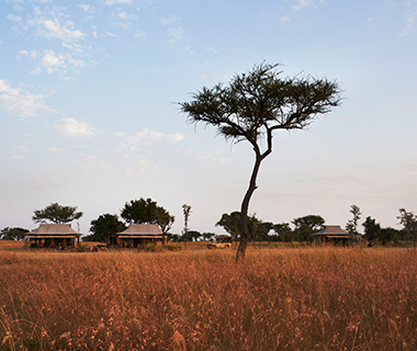 World's Greatest Dream Trips: Tanzania