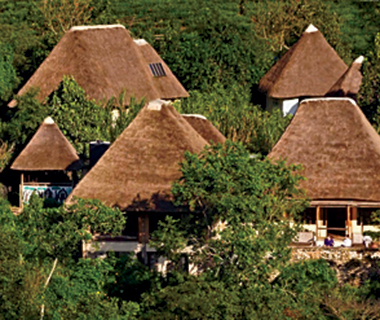 World's Greatest Dream Trips: Uganda