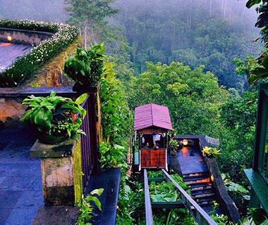 Beautiful Summer Travel Photos: Ubud, Bali