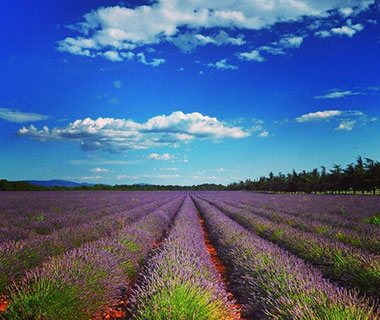 Beautiful Summer Travel Photos: Provence, France