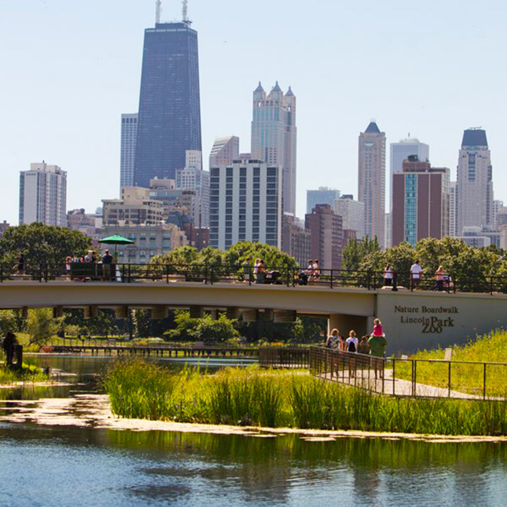 How to Live Like a Local in Chicago