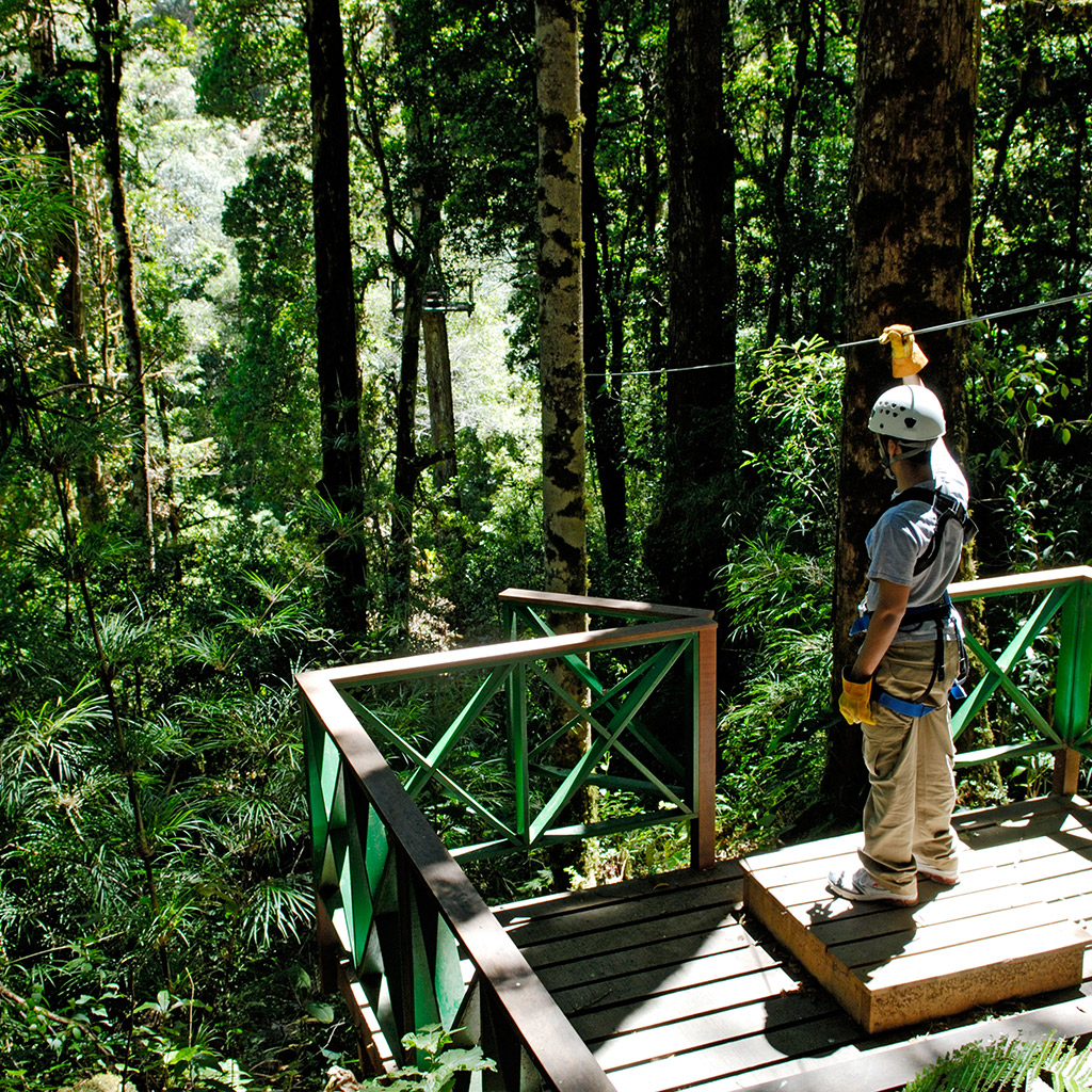 Best Ziplining Tours in Costa Rica