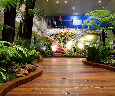 Best Airports for a Long Layover: Changi International Airport, Singapore