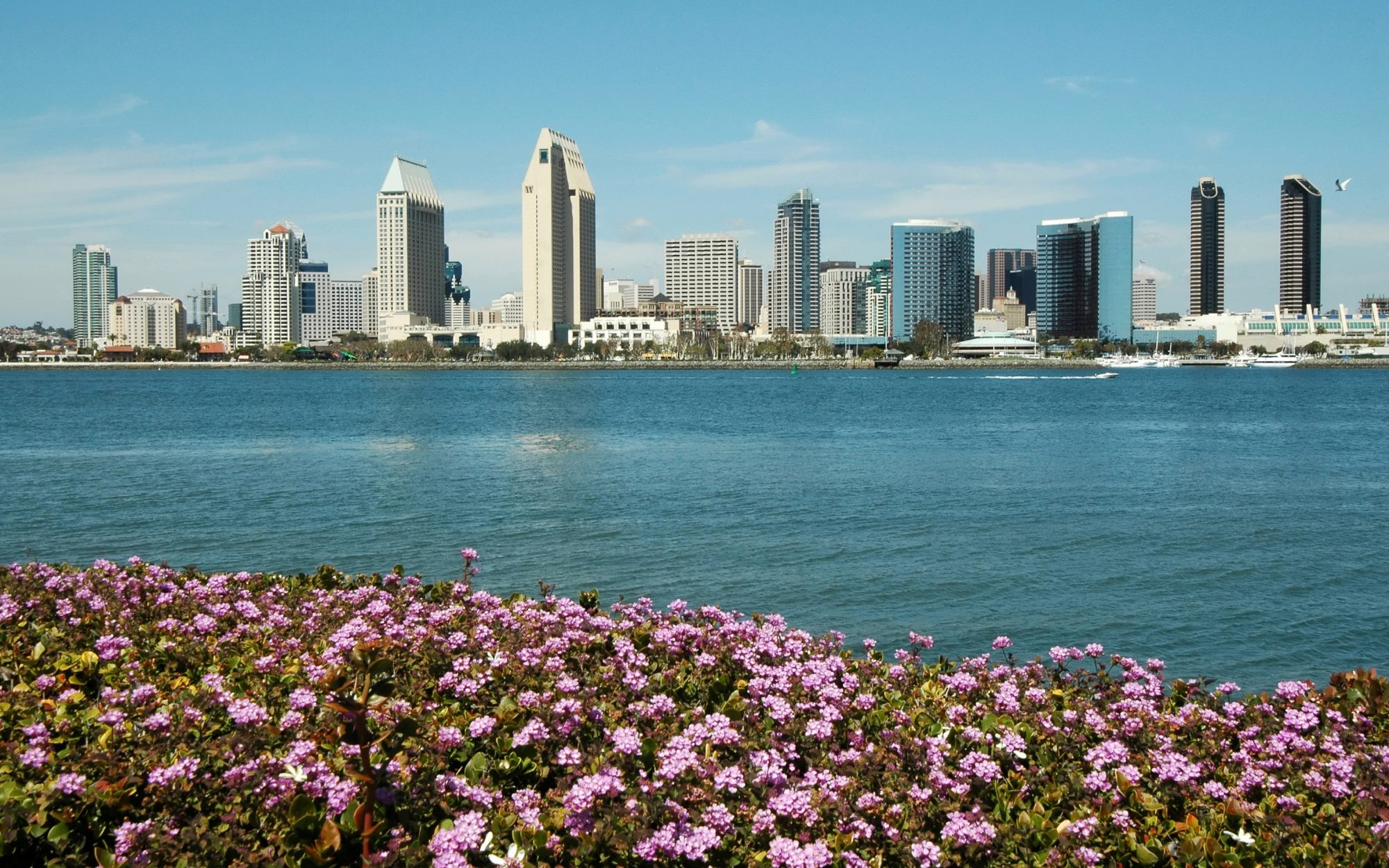Here Are the Greenest Cities in America: No. 16 San Diego