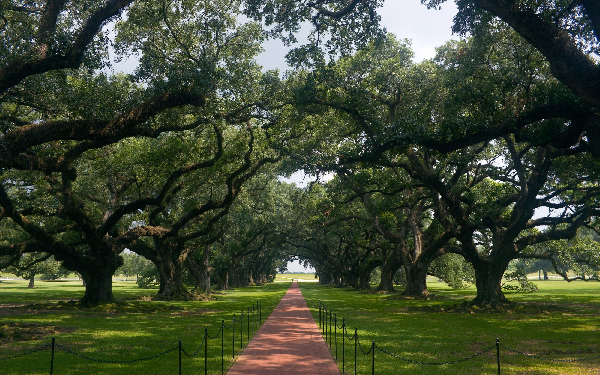 Here Are the Greenest Cities in America: No. 20 New Orleans