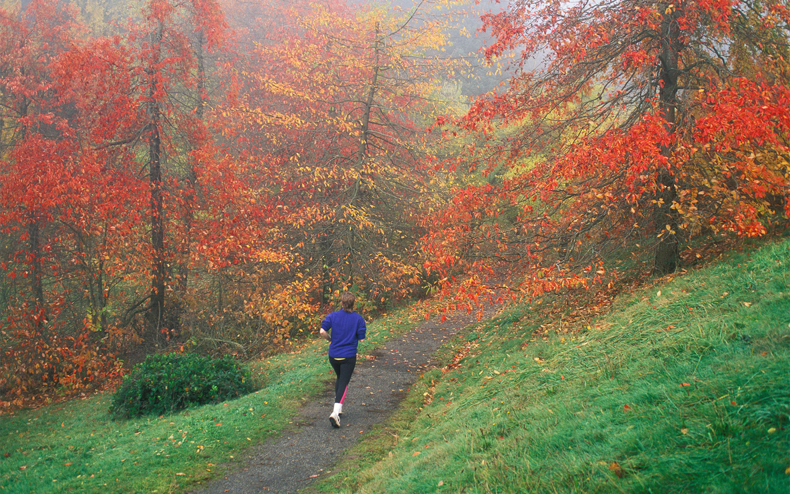 15 Destinations to Inspire Your Next Runner's High: Portland, OR