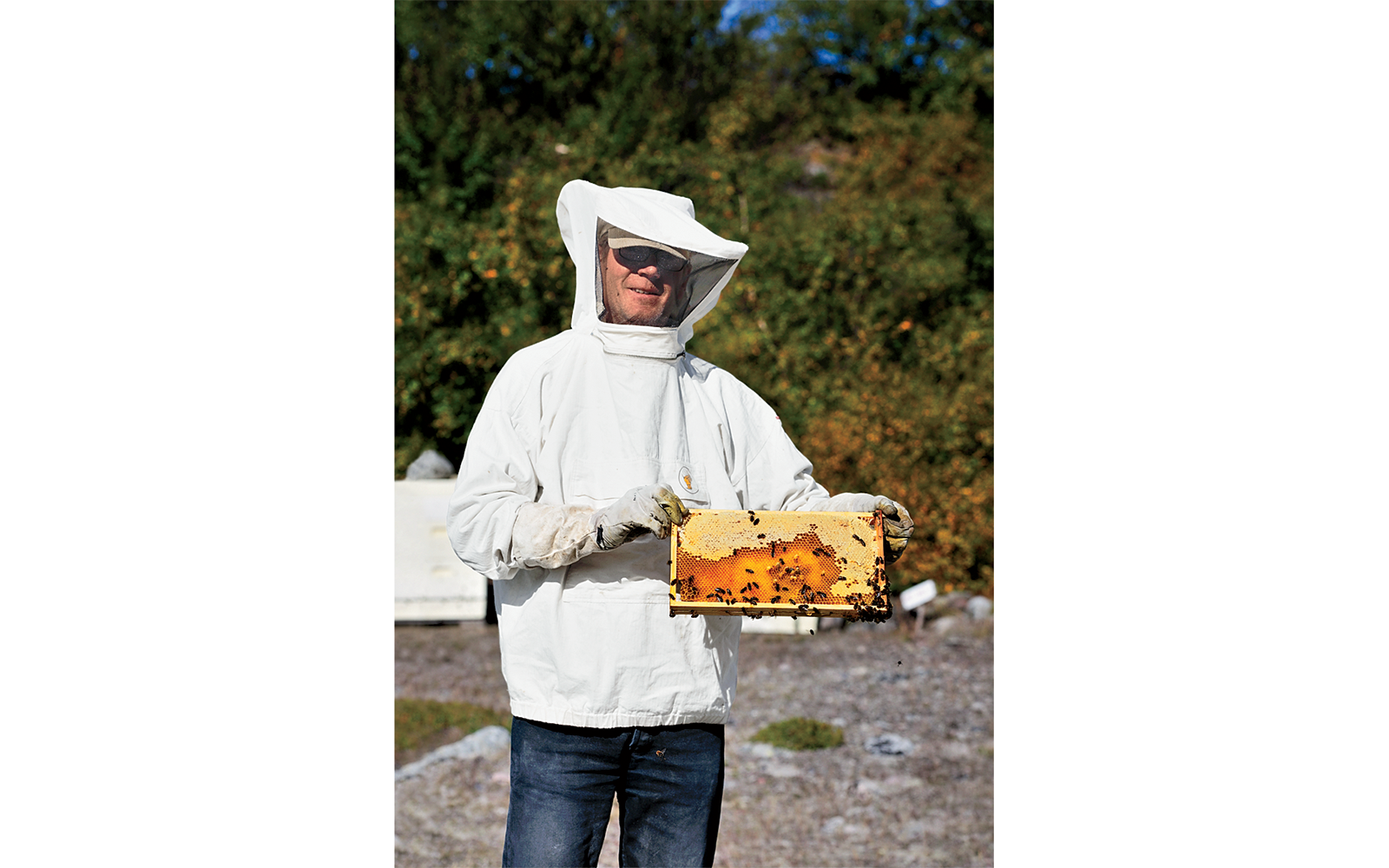 Food in Greenland: Beekeeper