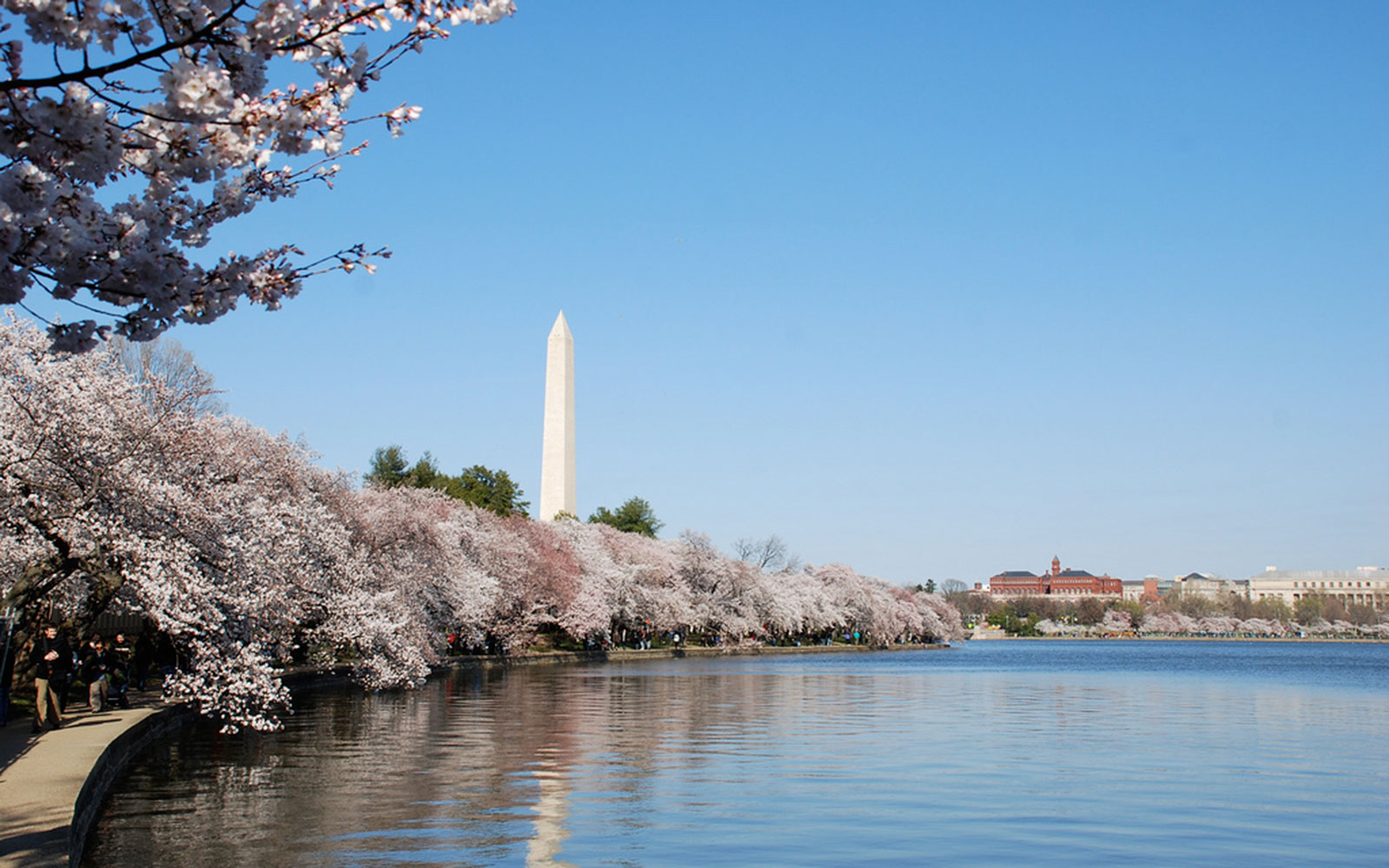 America's Best Cities for Festivals: Washington, D.C.