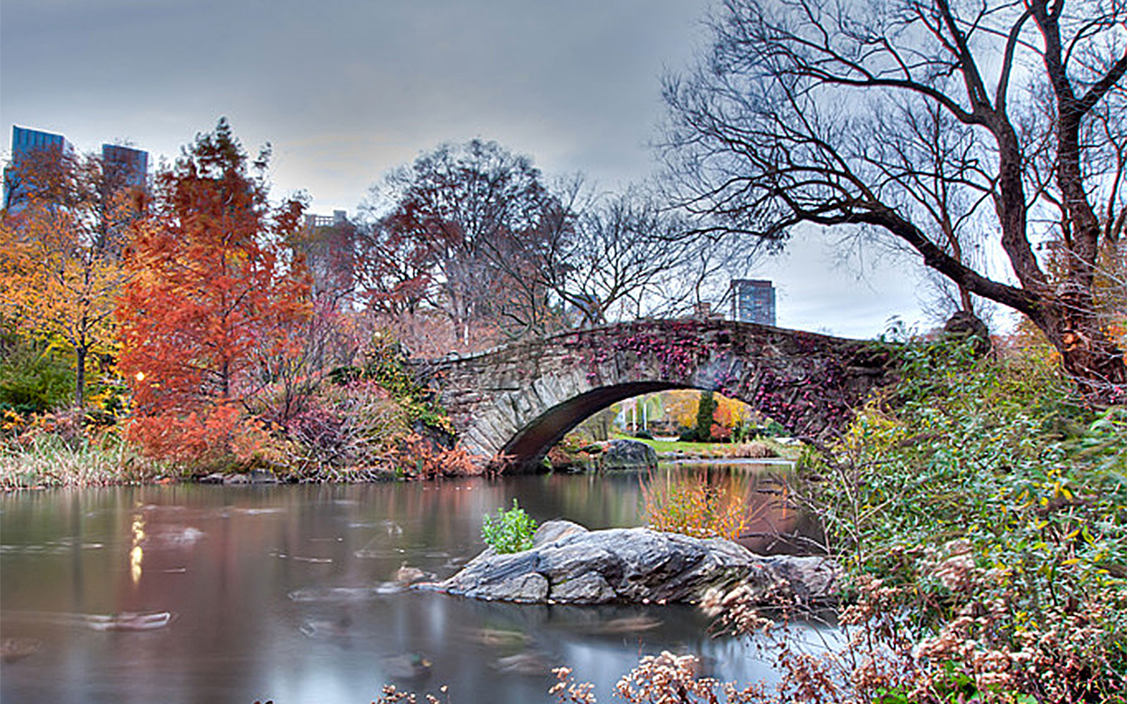 Best Parks in NYC: Central Park
