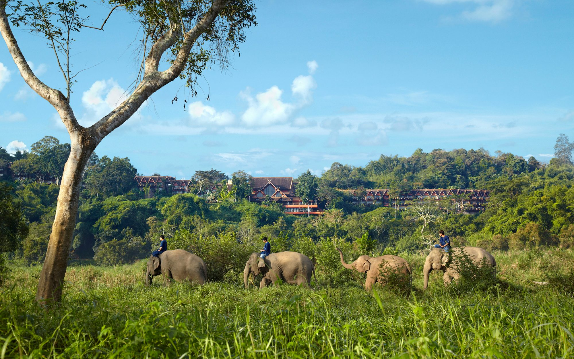 Anantara Golden Triangle Elephant Camp in Thailand