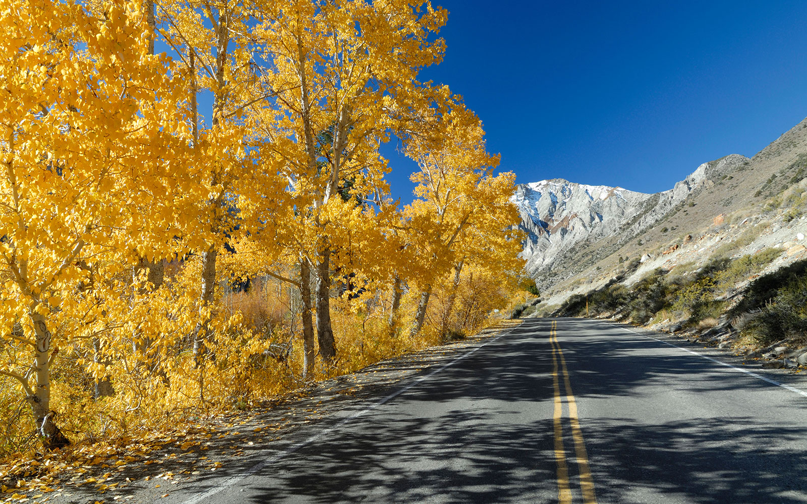 America's Best Fall Color Drives: Eastern Sierras, CA